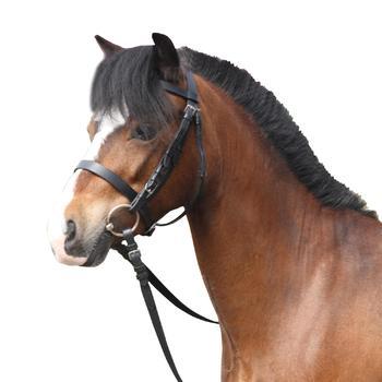 Filet + rênes équitation cheval et poney SCHOOLING cuir noir - 99373