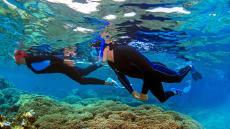 Deux personnes pratiquant le snorkeling