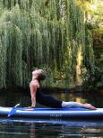 Körperstellung_6_sup_yoga