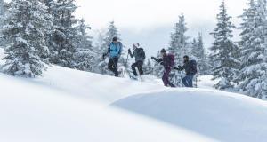 Découvrez les termes de la randonnée neige avec Quechua