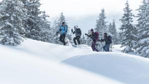 Ontdek alle begrippen over sneeuwhiken met Quechua