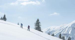 Découvrez la randonnée neige avec Quechua