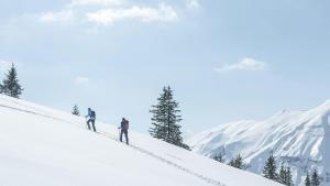 Ontdek sneeuwhiken met Quechua