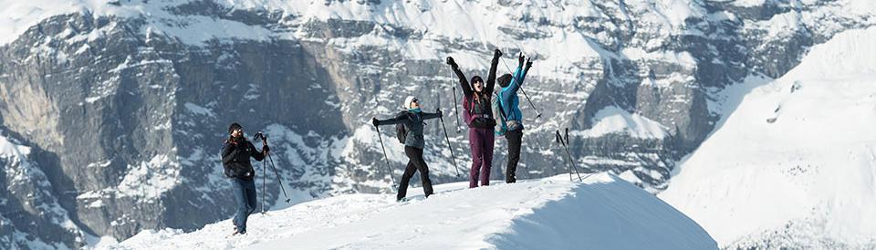 Retrouvez les informations sur la randonnée neige