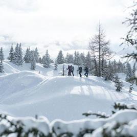 Descobrir os benefícios da caminhada na neve