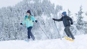 Découvrir toutes les bienfaits de la randonnée neige