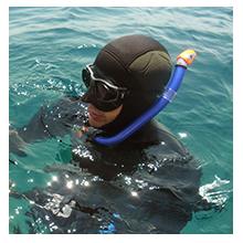 adam chef de produit chasse sous-marine subea