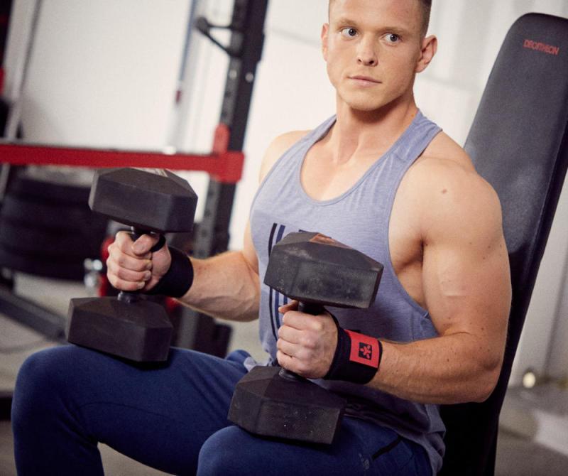 Le muscule