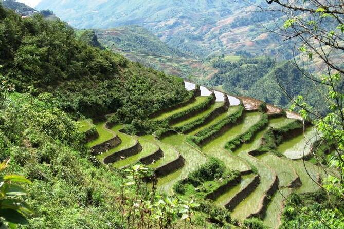 rizieres vietnam sapa voyage