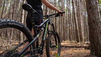 Mountain Bike mulhouse