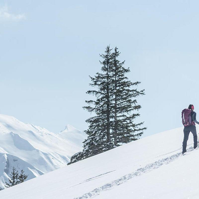 Découvrir toutes les informations sur la randonnée neige