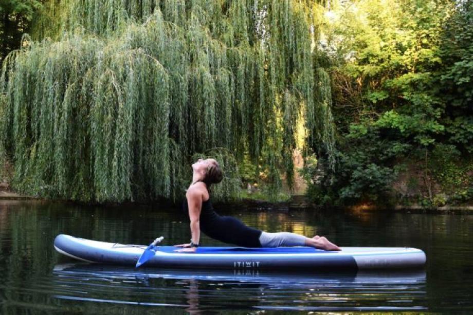 stand-up-paddle-yoga-6_chien_tete_en_haut