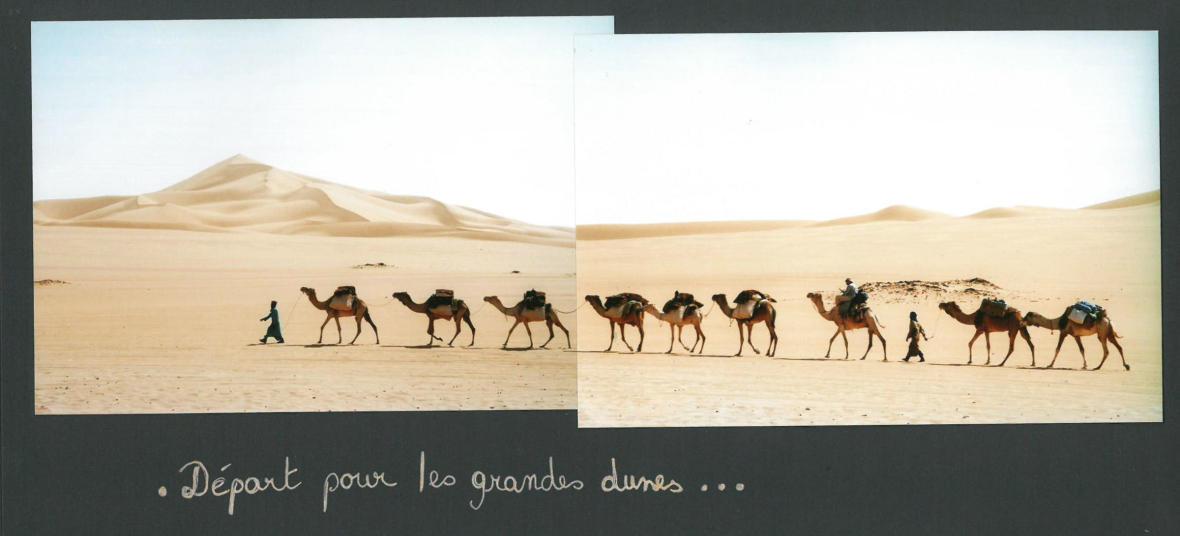 dromadaires sahara desert de lybie meharee