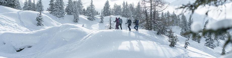 Laarzen of schoenen kiezen voor sneeuwwandelingen: de tips van decathlon