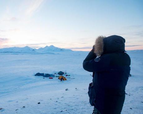 Trekking arctique