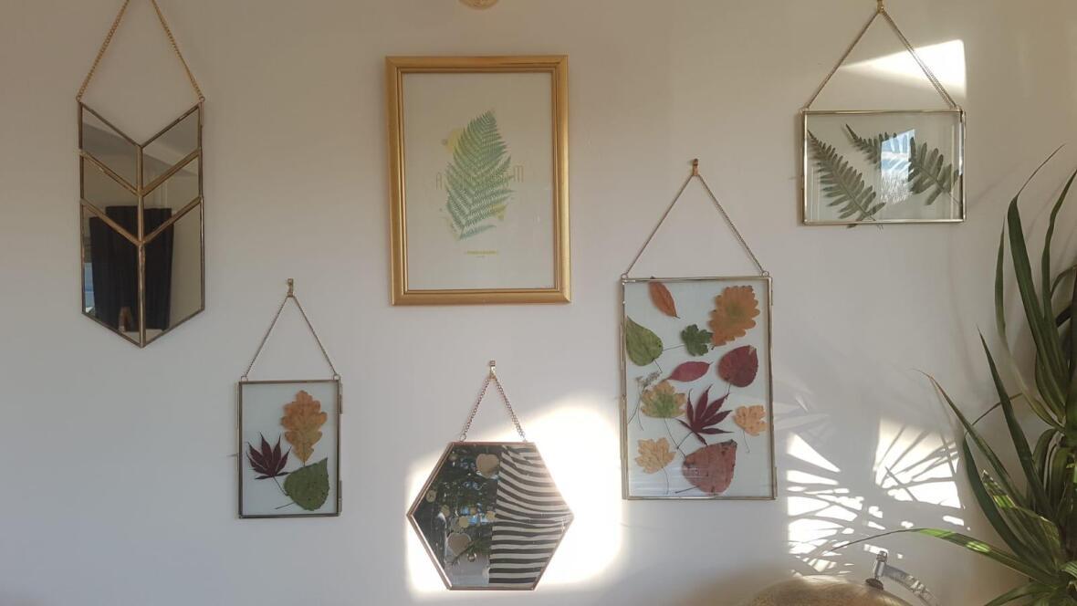 cadres-herbier-nature-feuilles