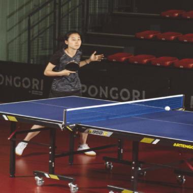 tennis de table free ping pong académique cours jeu match