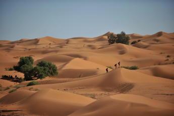conseils-découvrir-le-trekking-sophie-sahara