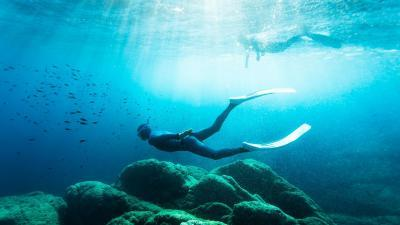 apn%C3%A9e-freediving.jpg