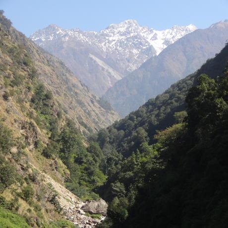 Langtang trek montagnes