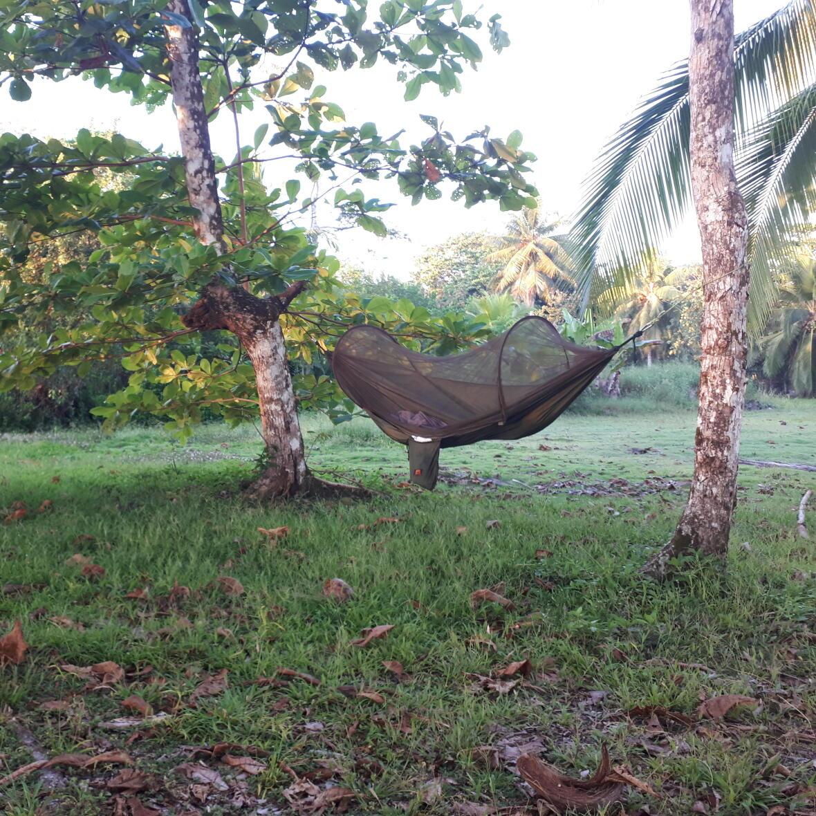 Bivouac en hammac dans la jungle