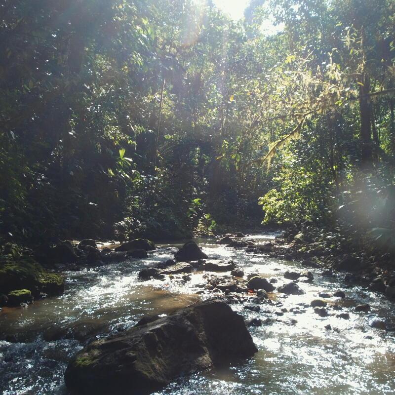 tropical trek moustique protection
