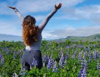 itineraire trek d'un voyage en Islande