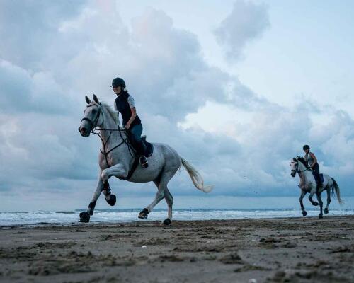 Sophie, paardenliefhebster bij Decathlon