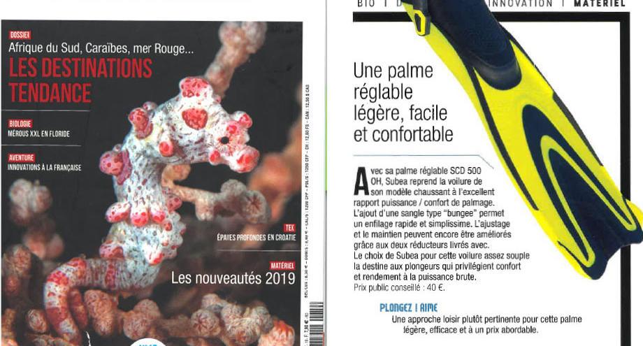 Palme réglable-blog-magazine-plongez!