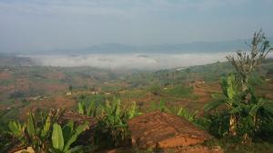 teaser-rwanda-landschap