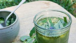 recette_cueillette_nature_plantes_randonnée_healthy_naturopathie_botanique_comestible_astuce_cueillir