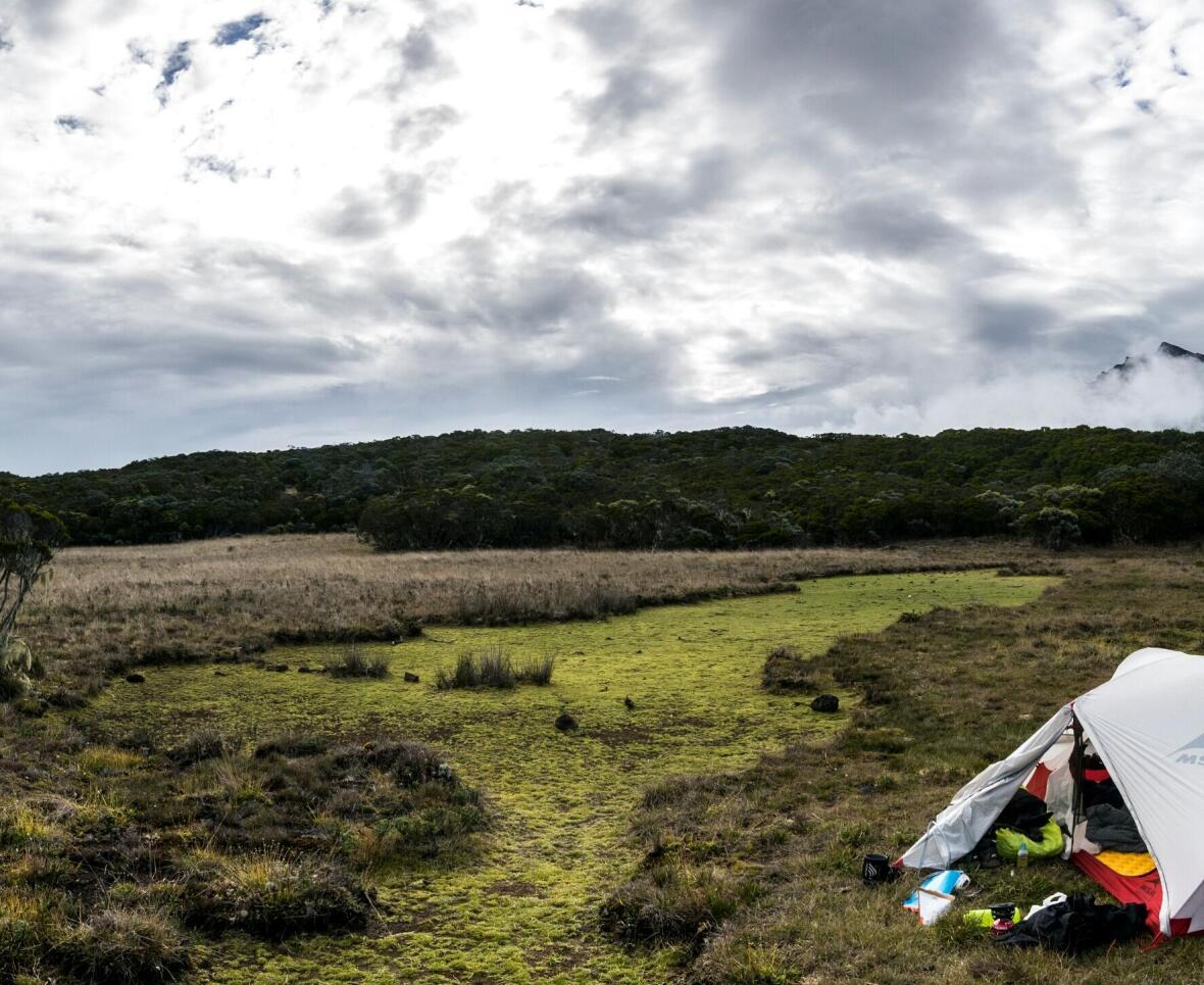 photo de Roche Plate à la Réunion