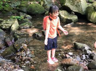 跟著晨晨登山隊來一趟夏日親子健行-image16