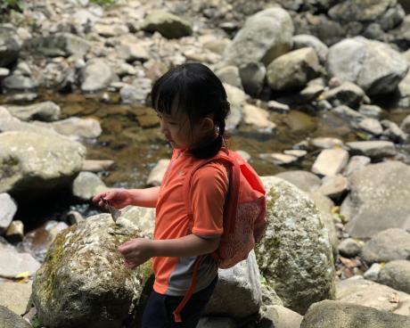跟著晨晨登山隊來一趟夏日親子健行-image22