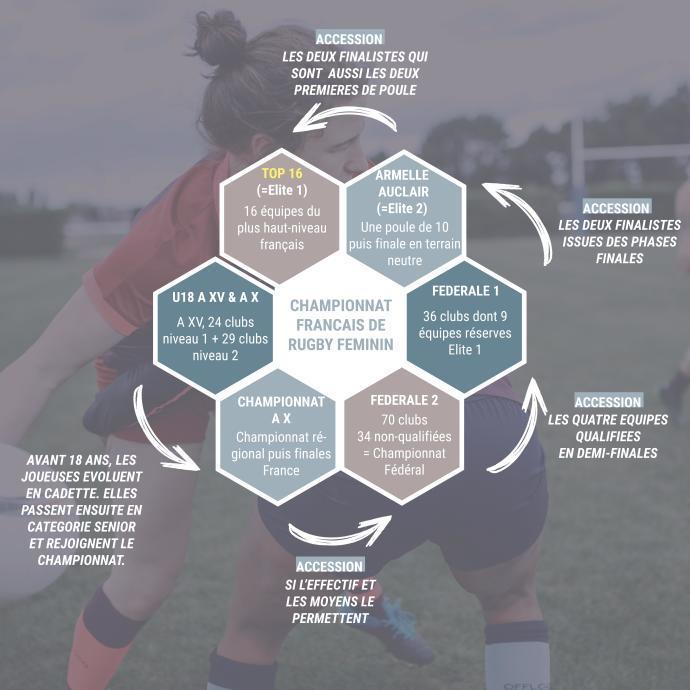 conseils-organisation-du-championnat-de-rugby-féminin-en-France