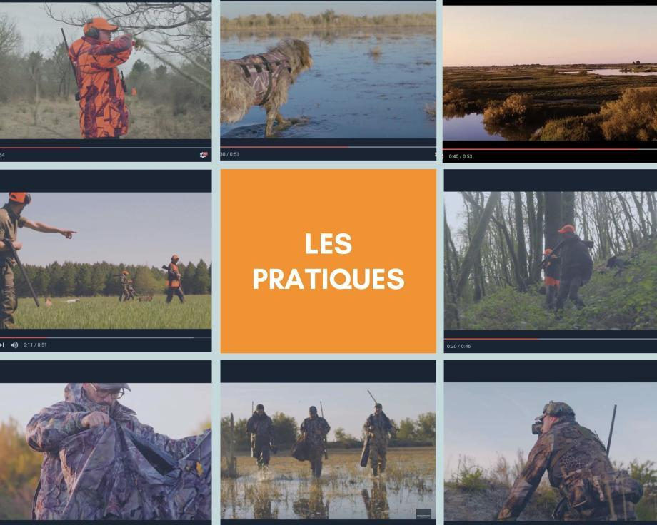 Les pratiques de chasse