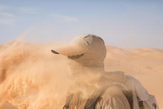 what to do in a sandstorm