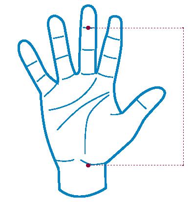 manique-gym-anneaux-barres-asymetriques.png