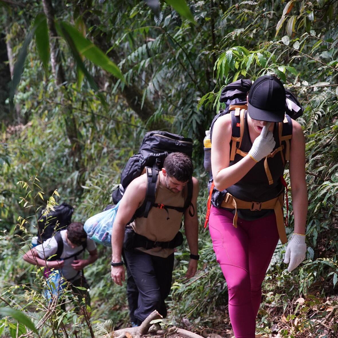 rando dans la jungle de sapa au vietnam