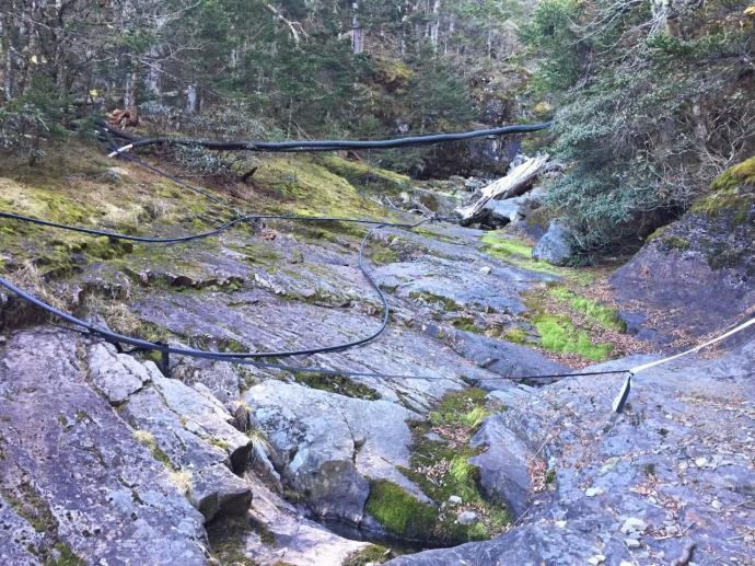 這條水源路是七家灣溪的源頭