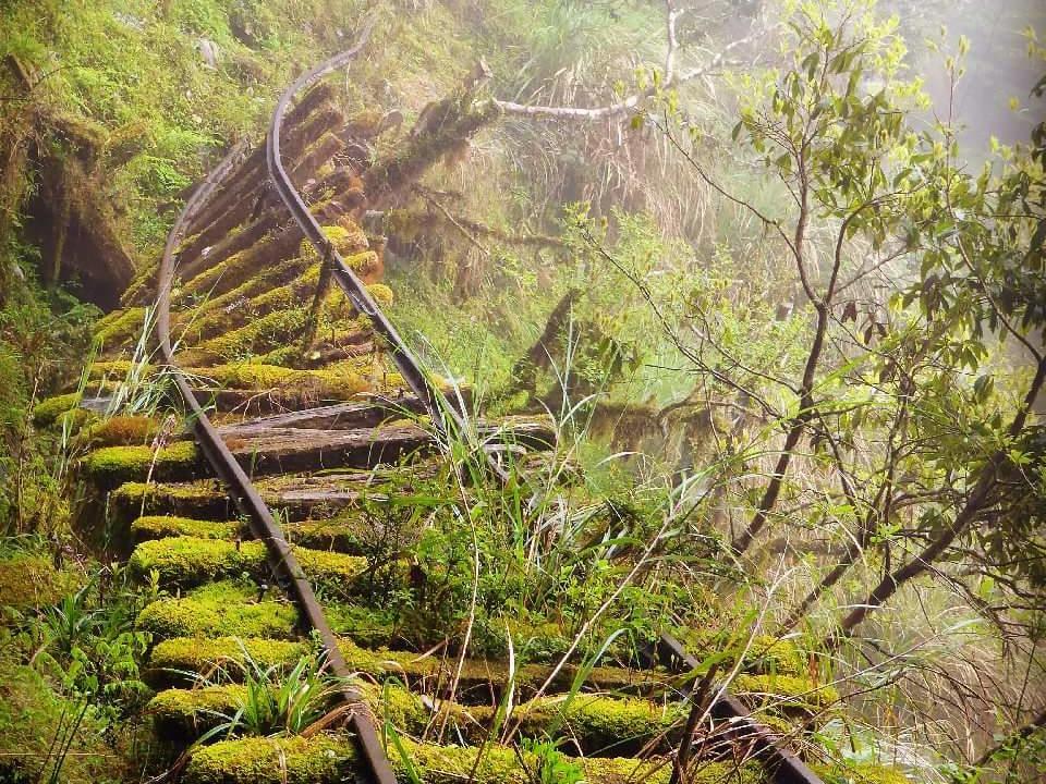 太平山見晴步道