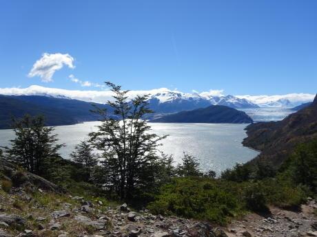 trek au glaicer grey patagonie chili