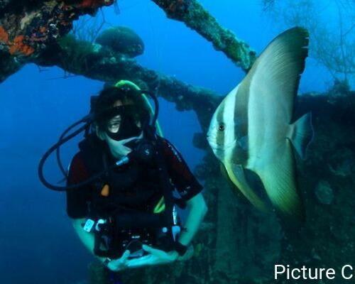 SG-Content-2-5-breathtaking-scuba-diving-spots