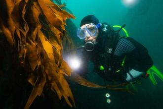 3-tips-to-have-a-successful-diving-trip