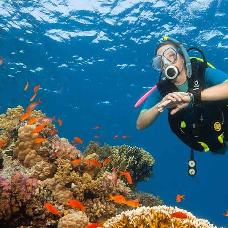BENEFITS OF BEING A SCUBA DIVER
