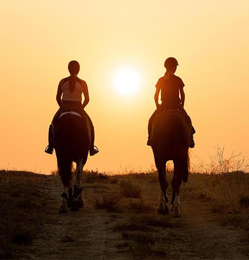 Boutique Randonnée equestre
