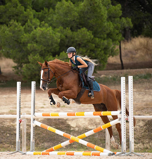 Boutique Jumping CSO