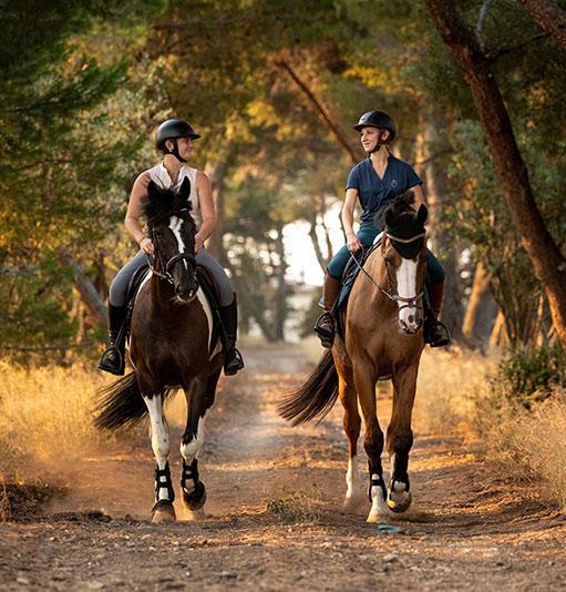Nouveautés Equitation