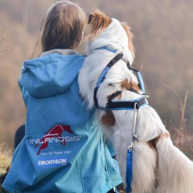 Urlaub für Zwei- und Vierbeiner: Camping mit Hund
