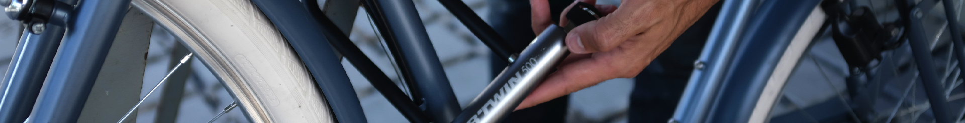 Cycle Locks